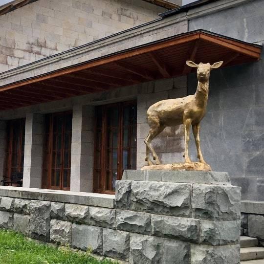Царская охота: экскурсия по заповедным лесам ЮБК. Цена — 1500 рублей.