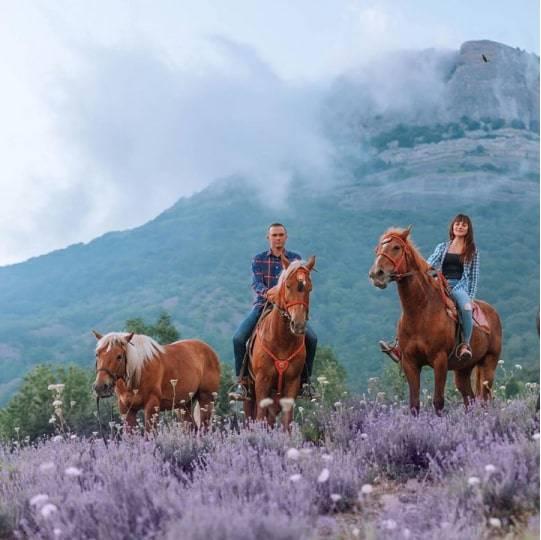 Конные прогулки на Демерджи, цена — 2500 рублей.